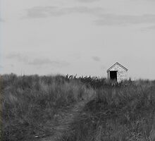 The Beach Hut by Claire Williams