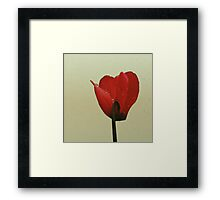 In red Framed Print