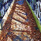 Fall Bridge by Glenna Walker