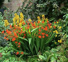 Powis Castle, Welshpool | Garden flowers by newbeltane