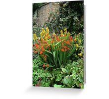 Powis Castle, Welshpool | Garden flowers Greeting Card