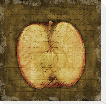 Apple Halved by Rene Hales