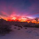 Joshua Tree Sunset Looking Towards Hidden Valley by photosbyflood