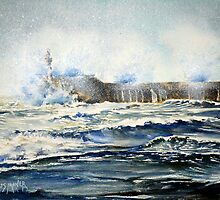 Newhaven Breakwater battered by southwesterly gales by LorusMaver
