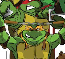 Enter the Turtles Sticker