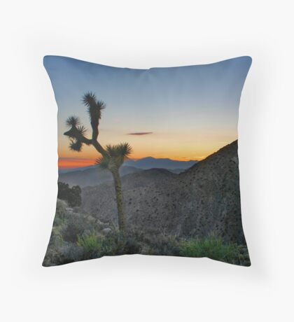 The Courage to Fight Throw Pillow