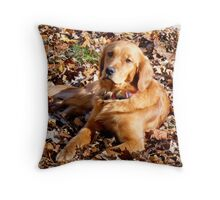 Penny you talking to me? Throw Pillow