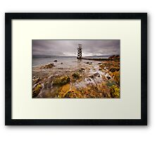 Moss on ya! Framed Print