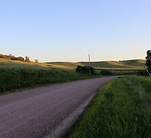 Country Road by dalemark