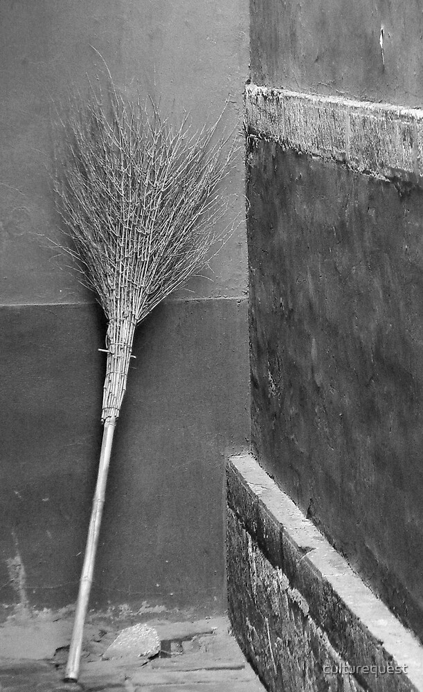 Lama's Broom by culturequest