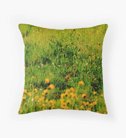 A Hidden Valley Squirrel Throw Pillow