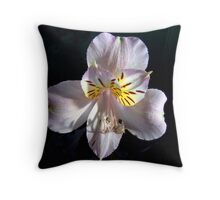 Alstroemeria or Peruvian Lily II Throw Pillow