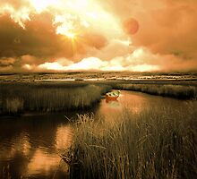 Infrared River by digitalmidge
