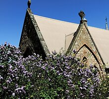 Lilac Bush - Carcoar Church Garden by Marilyn Harris