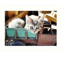 Kitten in Toy Truck Art Print