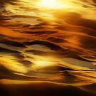 Rock Waves by Barbara  Brown