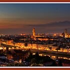 Florence Panorama by Shaun Whiteman