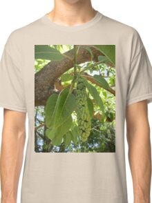 Fruit of the elephant tree Classic T-Shirt