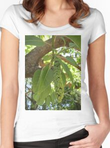 Fruit of the elephant tree Women's Fitted Scoop T-Shirt
