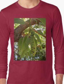 Fruit of the elephant tree Long Sleeve T-Shirt