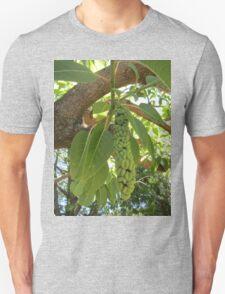 Fruit of the elephant tree T-Shirt