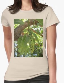Fruit of the elephant tree Womens Fitted T-Shirt