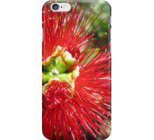 Bottle brush flower iPhone Case/Skin