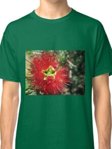 Bottle brush flower Classic T-Shirt