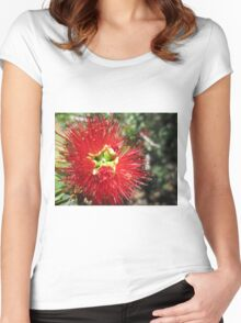 Bottle brush flower Women's Fitted Scoop T-Shirt
