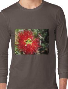Bottle brush flower Long Sleeve T-Shirt