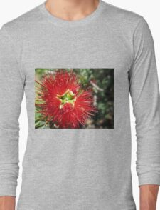 Bottle brush flower Long Sleeve T-Shirt