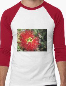 Bottle brush flower Men's Baseball ¾ T-Shirt
