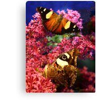 Merideth Butterflies Canvas Print