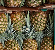 Pineapples by kitlew