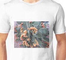 Prickly harvest Unisex T-Shirt