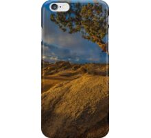 Joshua Tree Sunrise Jumbo Rocks iPhone Case/Skin