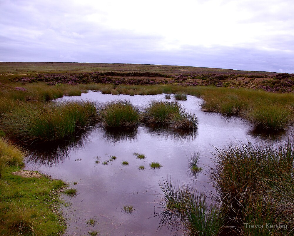 Moorland Tarn by Trevor Kersley