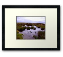 Moorland Tarn Framed Print