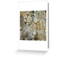 Botryoidal Calcite with Zeolite Greeting Card