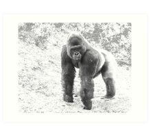 Magilla Gorillia  Art Print