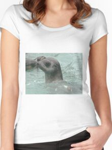 Baby Seal Women's Fitted Scoop T-Shirt