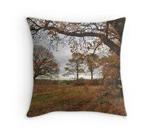 Adel Autumn Throw Pillow