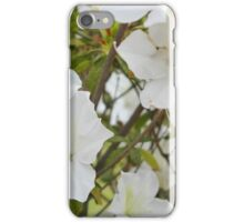 The front yard blooms iPhone Case/Skin