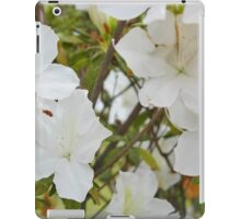 The front yard blooms iPad Case/Skin