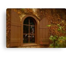 Window and Shutters Canvas Print