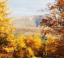 Road Colours by Richard Hanley www.scotland-postcards.com