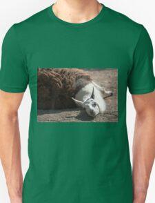 lamas in the farm T-Shirt