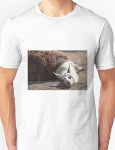 lamas in the farm Unisex T-Shirt