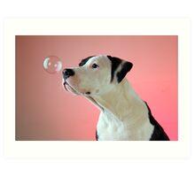 Curious Pup Art Print