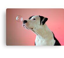 Curious Pup Canvas Print